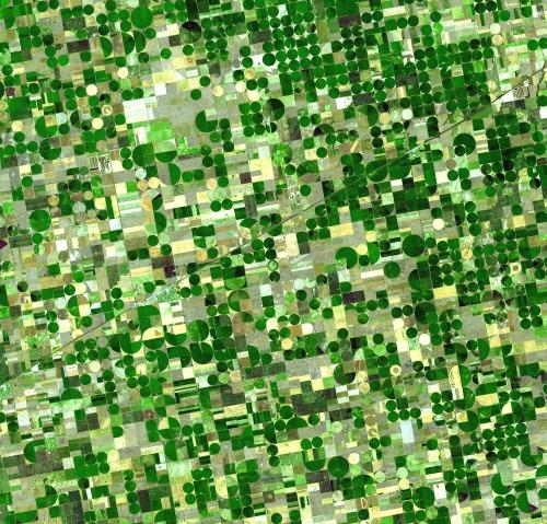 crops-sm